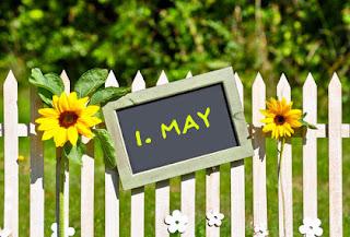 Δύο ηλίανθοι και μία ταμπέλα που γράφει 1η Μαΐου κρεμασμένα σε φράχτη.