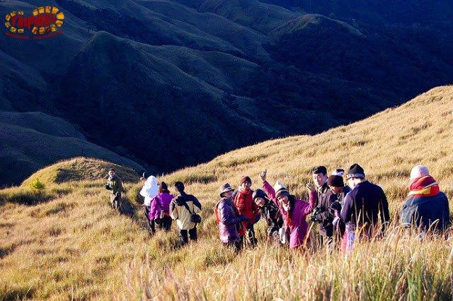 Mt. pulag trekking