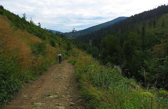 Powrót do doliny Rycerskiego Potoku.