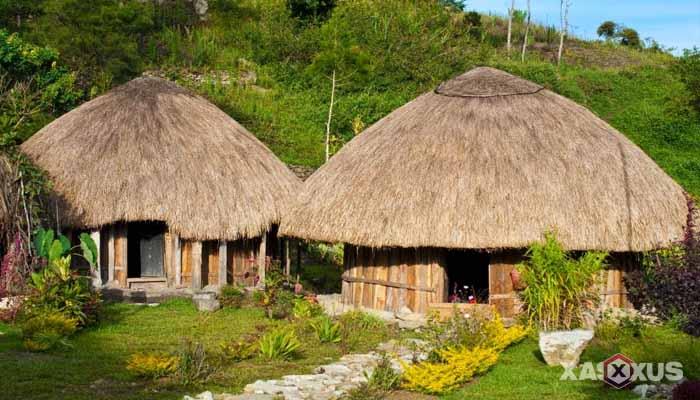 Gambar rumah adat Indonesia - Rumah adat Papua atau Rumah Honai