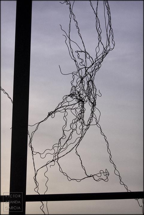 fotografía,limites,alambre,velpister,serie,arte