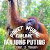 Paket Murah Explore Tanjung Puting (4H3M)