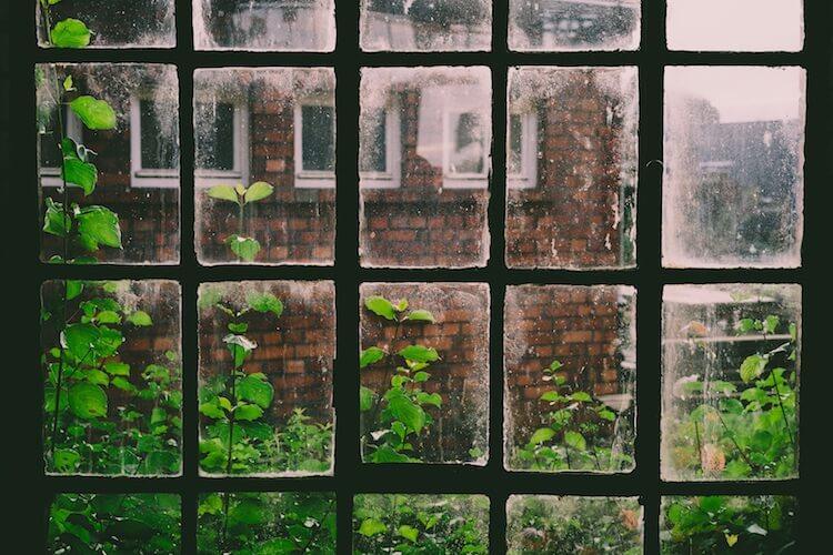 humedad ventana