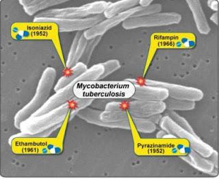 Obat-Obat Tbc Serta Efek Sampingnya