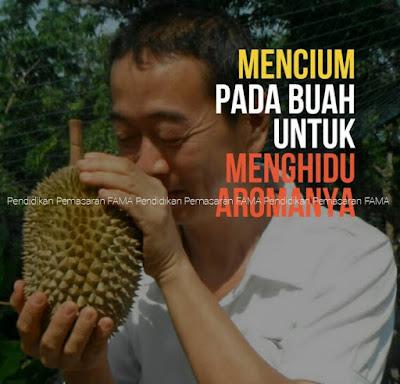 Cium Aroma Durian