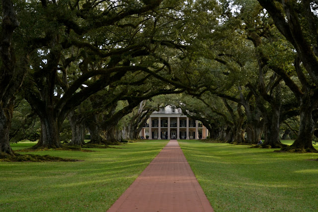 Плантация Дубовая Аллея, Вачери, Луизиана (Oak Alley Plantation, Vacherie, LA)