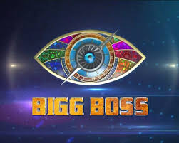 Rubina Delaike or ALI GONI ? Know weekly fees of other 'Bigg Boss 14' contestants