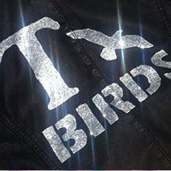 TBird grease movie jacket stencil for DIY dressup costume