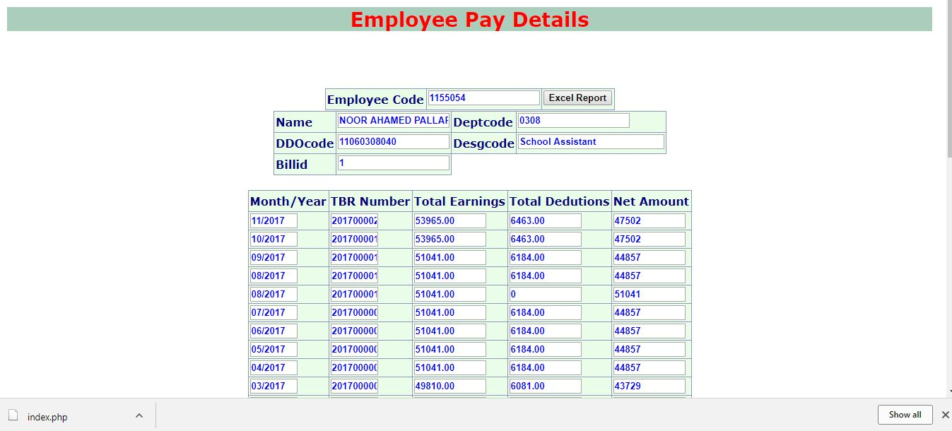 Step 5:Click On Excel Report  Employees Salary Slip