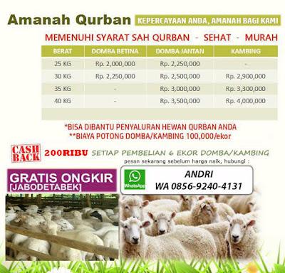 Jual Hewan Qurban Online, Jual Hewan Qurban Murah, Harga Kambing Qurban 2017
