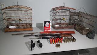 Idoso é preso com cinco armas e aves silvestres dentro de casa na PB