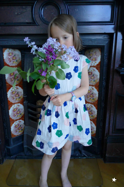 flowers lilas
