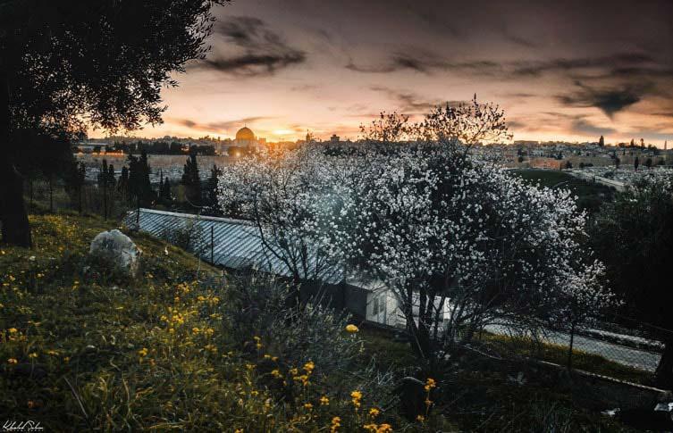 Photos of Jerusalem