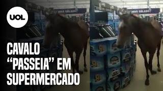 Cavalo entra em mercado – Casos de covid-19 bate recorde nos Estados Unidos – Terremoto  atinge Turquia e ilha na Grécia