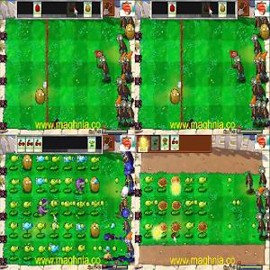 Plants vs Zombies alnif tinghir