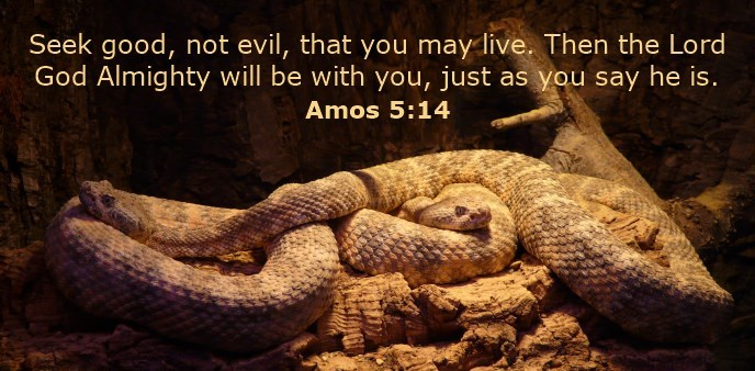 Seek good, not evil, that you may live. Then the Lord God Almighty will be with you, just as you say he is.