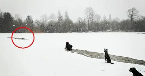 Девушка прыгнула в ледяную воду для спасения чужого пса