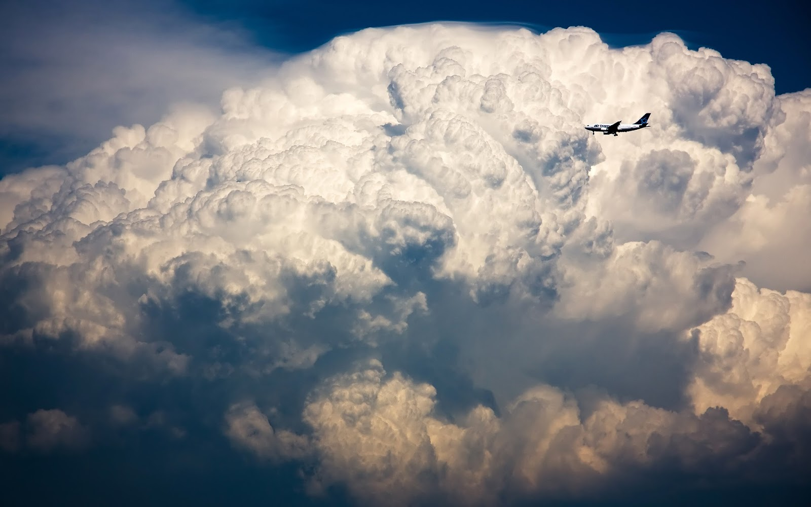 Plane and cumulus cloud