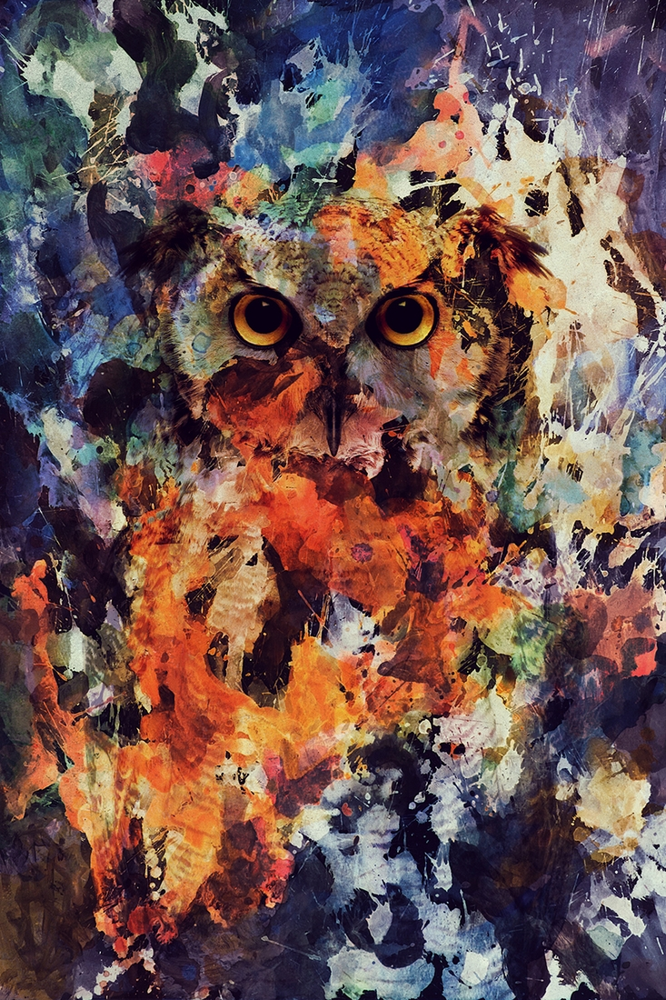01-Owl-Andreas-Lie-Watercolor-Paintings-that-Blend-in-the-Background-www-designstack-co