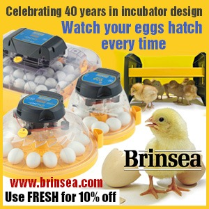 Brinsea - Your Incubation Specialists