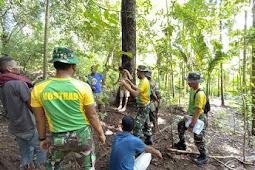 Peduli Lingkungan, Satgas Pamtas RI-RDTL YONARMED 6/3 Kostrad Rangkul Generasi Muda Tanam Pohon