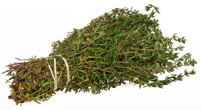 tomillo salsero : recibe este nombre porque los pastores la utilizaban para condimentar las sopas, se usa también para aliñar las aceitunas, para curar llagas en la boca