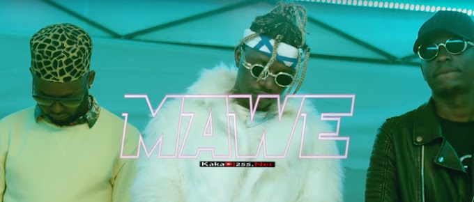 VIDEO: Nyandu Tozzy Ft Rayvanny & Mr Blue - Mawe