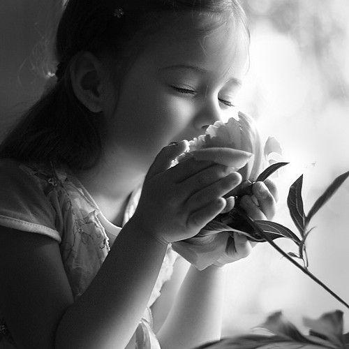 Aroma Yang Mencengkam Nafsu Meronta-ronta