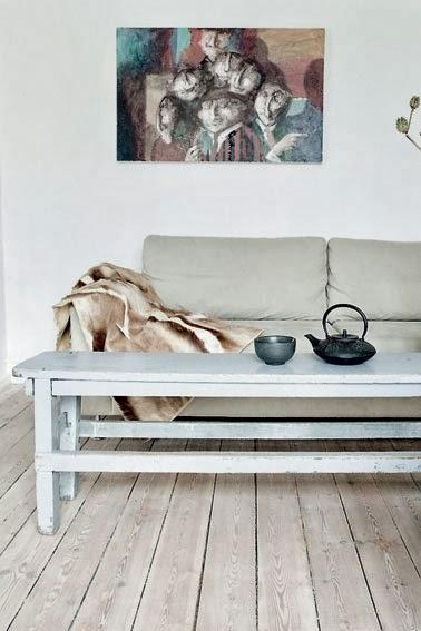 plaid de pelo en el sofa