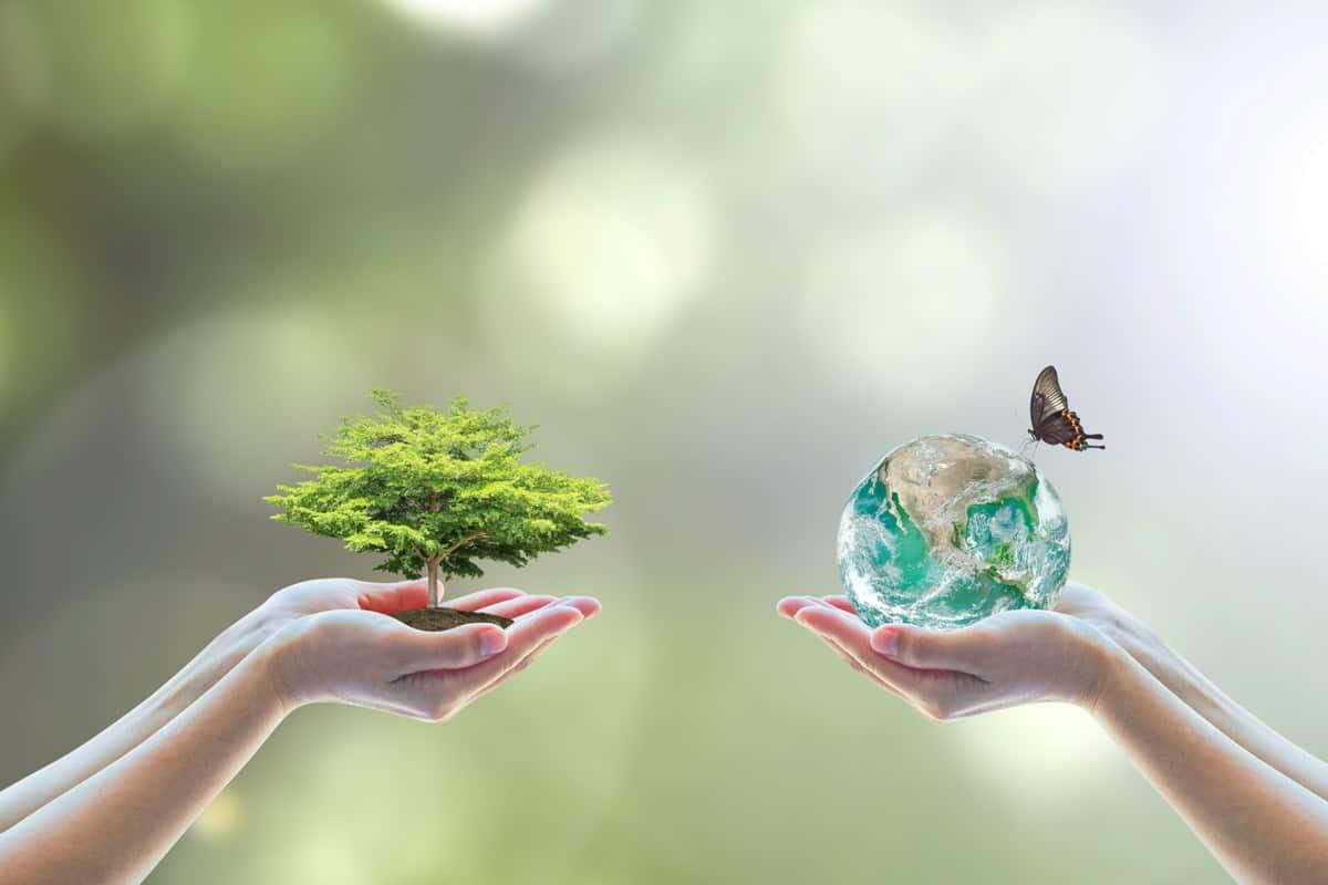 عبارات عن البيئة