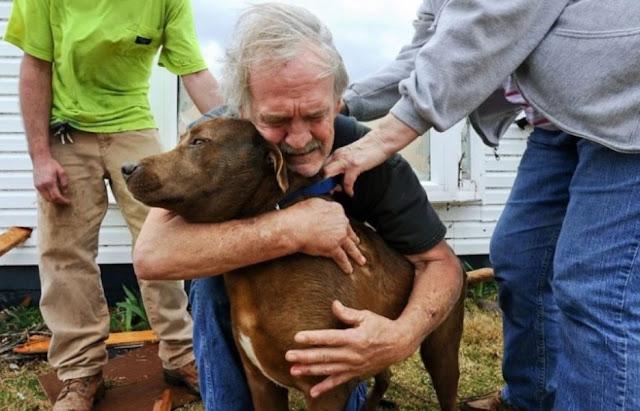 Мужчина спас тяжело больную собаку, потратив все деньги, которые копил всю жизнь