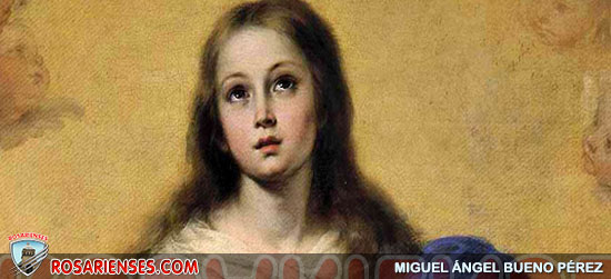 La Gracia es capaz de suscitar una respuesta: el Papa sobre la Inmaculada | Rosarienses, Villa del Rosario
