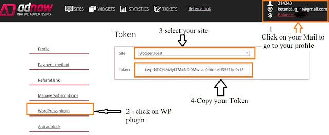 How to setup Adnow wordpress plugin?