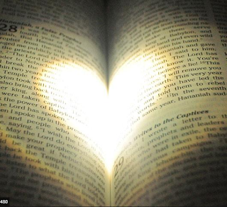 Christ Embassy, Bible