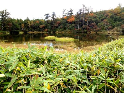 富貴原の池(ふうきはらのいけ)