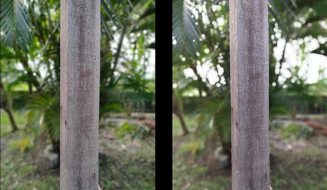 Perbandingan Kamera Samsung Galaxy M51 dengan Realme 7 Pro Portrait