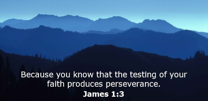 Because you know that the testing of your faith produces perseverance.