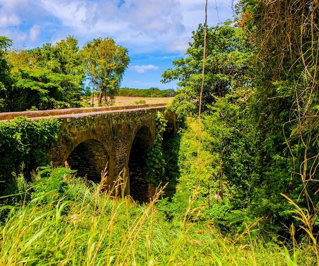 Blackmans Bridge & Gully
