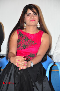 Police Power Telugu Movie Press Meet Stills  0005.jpg