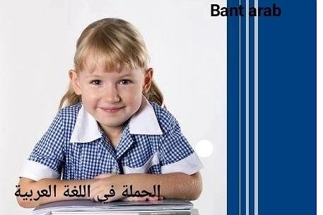 الجملة في اللغة العربية