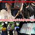 Kapolda Diminta Tindak Judi Sabung Ayam Yang Mulai Marak Di Namrole