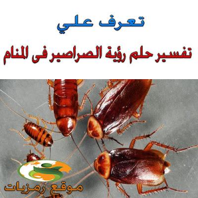 تفسير حلم رؤية الصراصير فى المنام