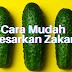 CARA MUDAH BESARKAN ZAKAR