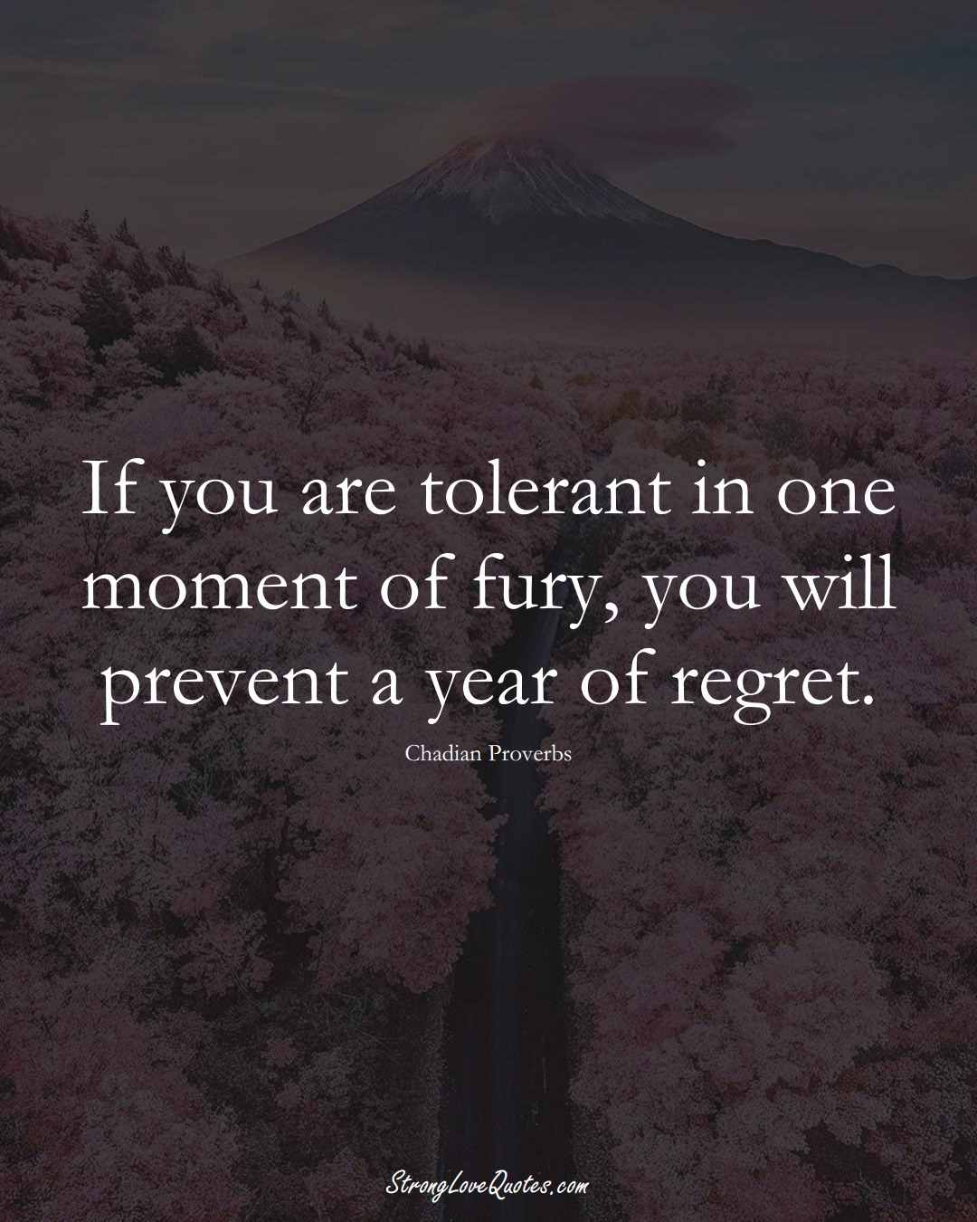 If you are tolerant in one moment of fury, you will prevent a year of regret. (Chadian Sayings);  #AfricanSayings