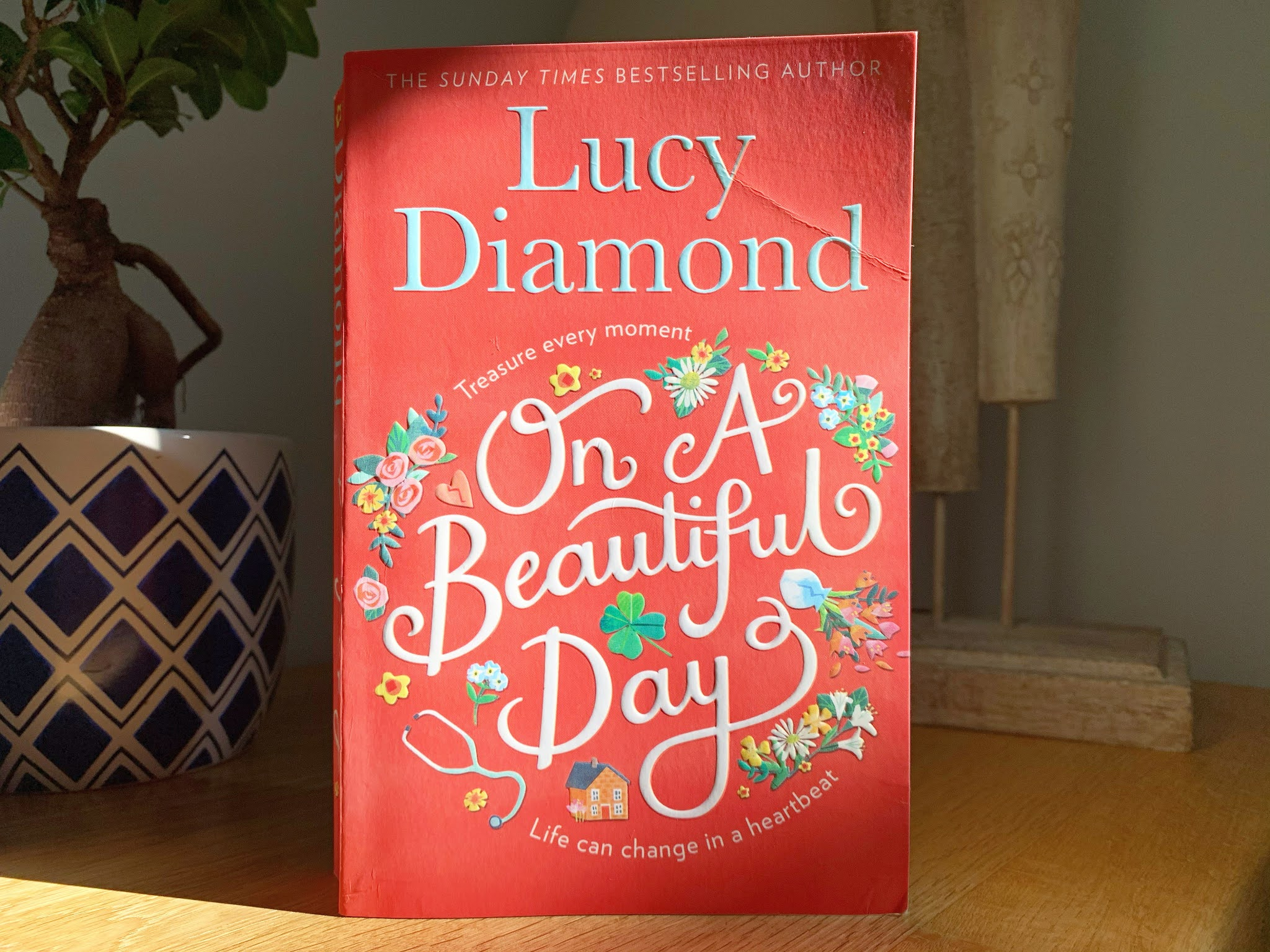 On a Beautiful Day by Lucy Diamond book on a shelf