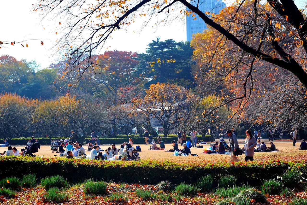 Families picnic at Shinjuku Gyoen National Garden, Tokyo