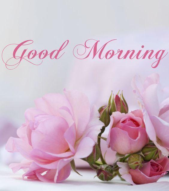 Romantic Good Morning Flowers for Girlfriend