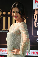 Sonal Chauhan in a stonework Floor Length Silver Designer Gown at IIFA Utsavam Awards March 2017 040.JPG