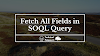 Fetch All Fields In SOQL Query | Spring 21 New Feature