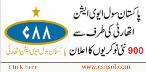 Pakistan Civil Aviation Authority PCAA Jobs Advertisement November 2019